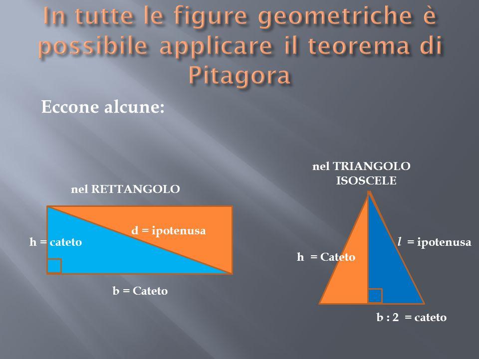 In tutte le figure geometriche è possibile applicare il teorema di Pitagora