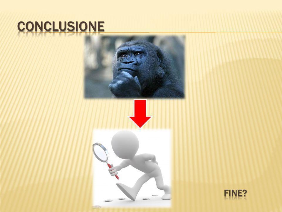 Conclusione Fine