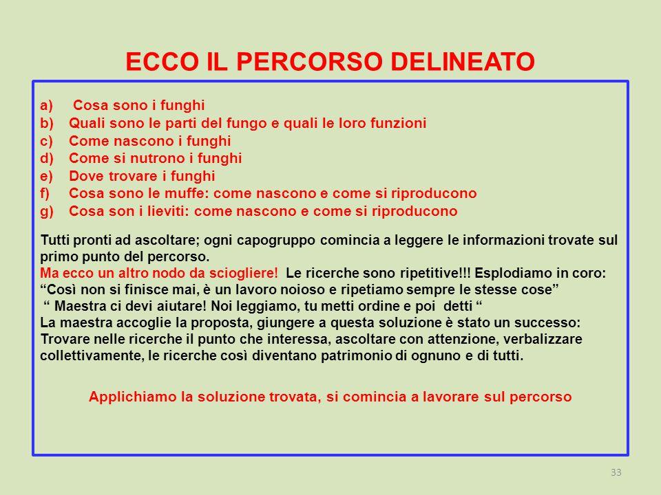 ECCO IL PERCORSO DELINEATO