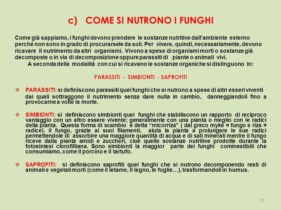 c) COME SI NUTRONO I FUNGHI
