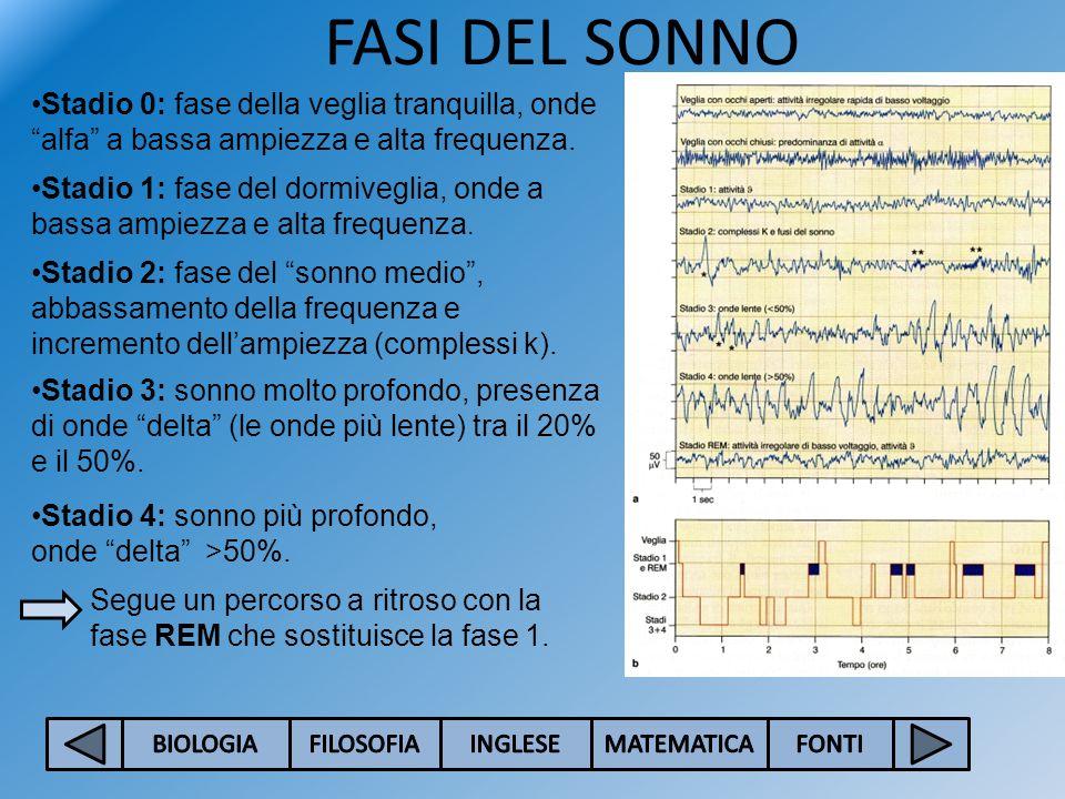 FASI DEL SONNO Stadio 0: fase della veglia tranquilla, onde alfa a bassa ampiezza e alta frequenza.