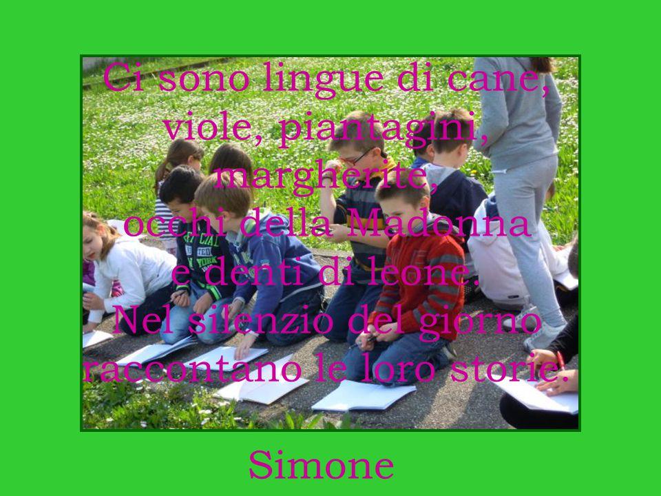Nel silenzio del giorno raccontano le loro storie. Simone