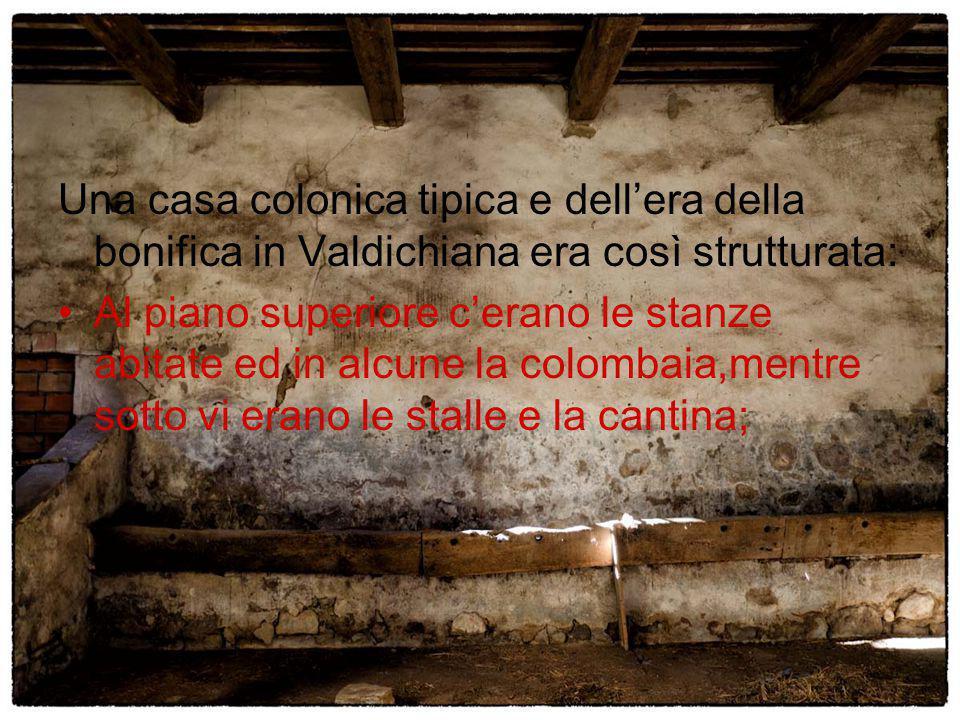 Una casa colonica tipica e dell'era della bonifica in Valdichiana era così strutturata: