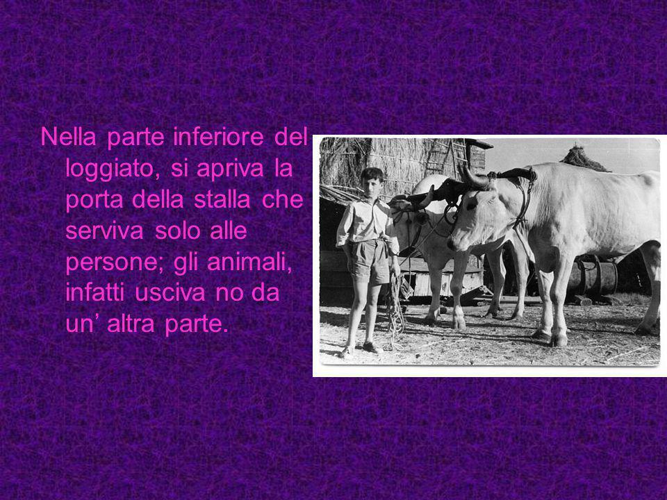 Nella parte inferiore del loggiato, si apriva la porta della stalla che serviva solo alle persone; gli animali, infatti usciva no da un' altra parte.