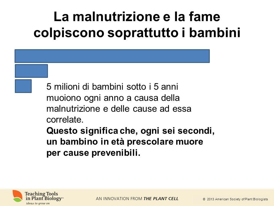 La malnutrizione e la fame colpiscono soprattutto i bambini