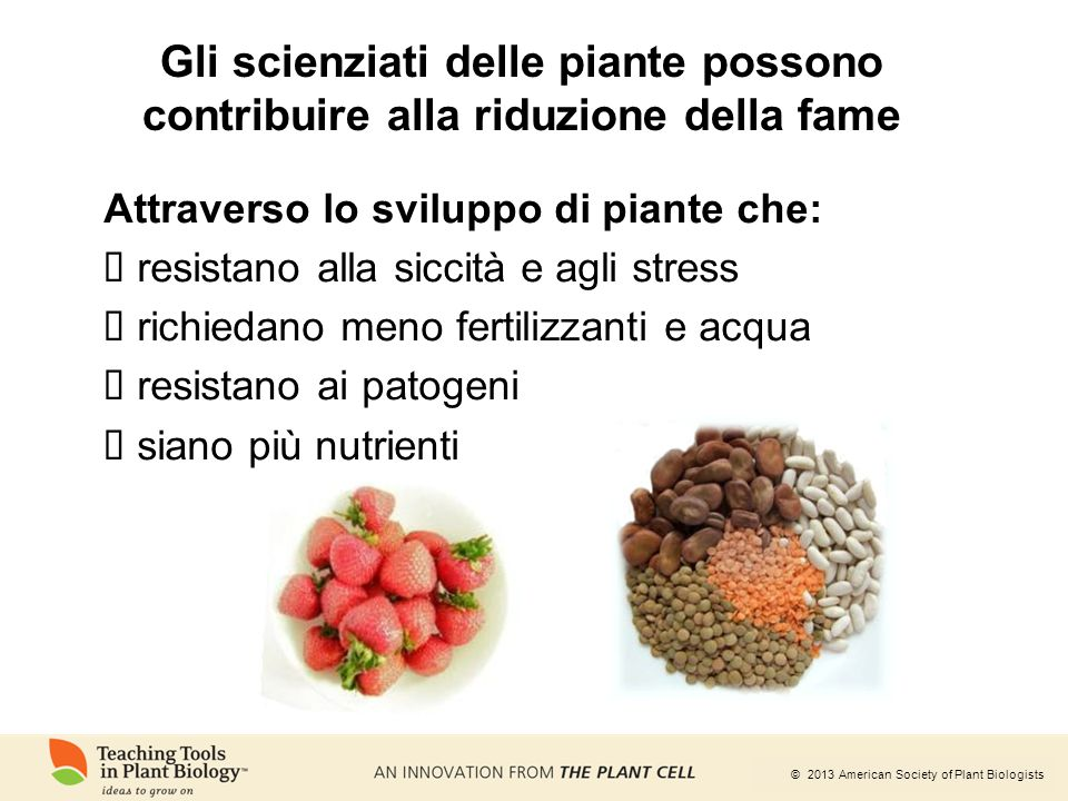 Gli scienziati delle piante possono contribuire alla riduzione della fame