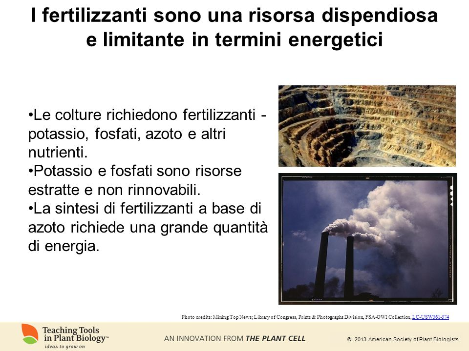 I fertilizzanti sono una risorsa dispendiosa e limitante in termini energetici