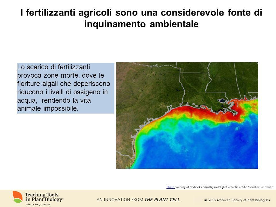 I fertilizzanti agricoli sono una considerevole fonte di inquinamento ambientale