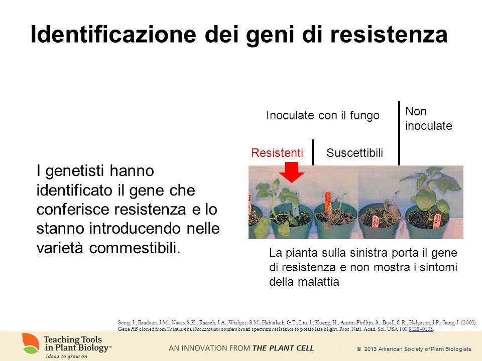 Identificazione dei geni di resistenza