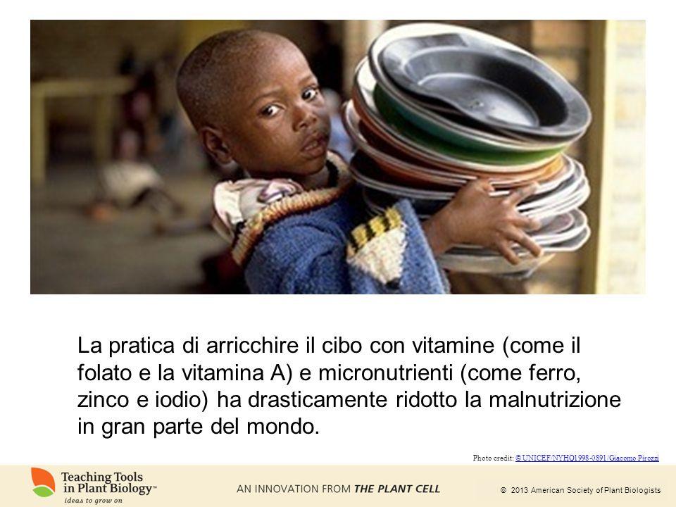 La pratica di arricchire il cibo con vitamine (come il folato e la vitamina A) e micronutrienti (come ferro, zinco e iodio) ha drasticamente ridotto la malnutrizione in gran parte del mondo.