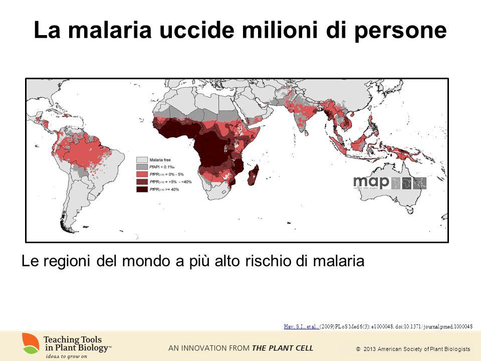 La malaria uccide milioni di persone