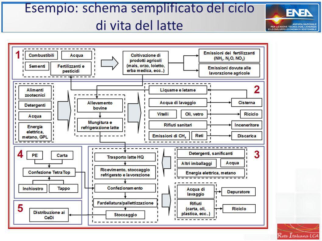 Esempio: schema semplificato del ciclo di vita del latte