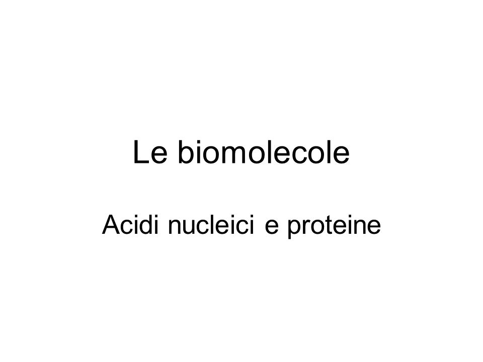Acidi nucleici e proteine