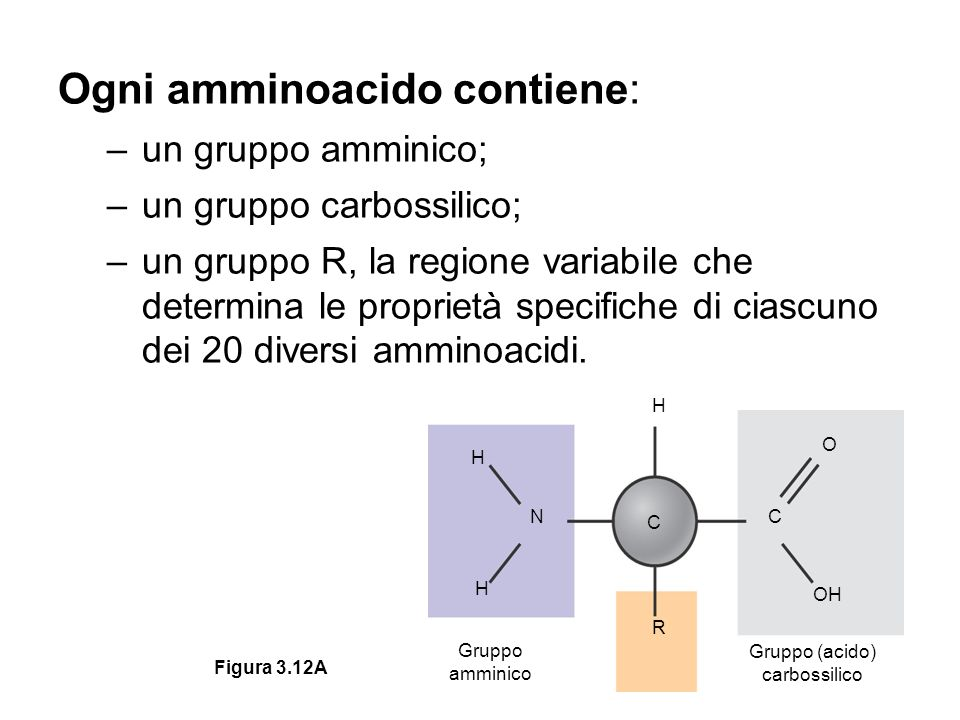Gruppo (acido) carbossilico