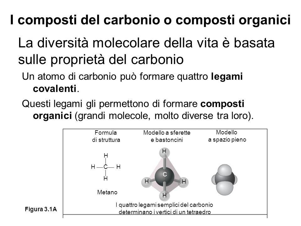 I composti del carbonio o composti organici