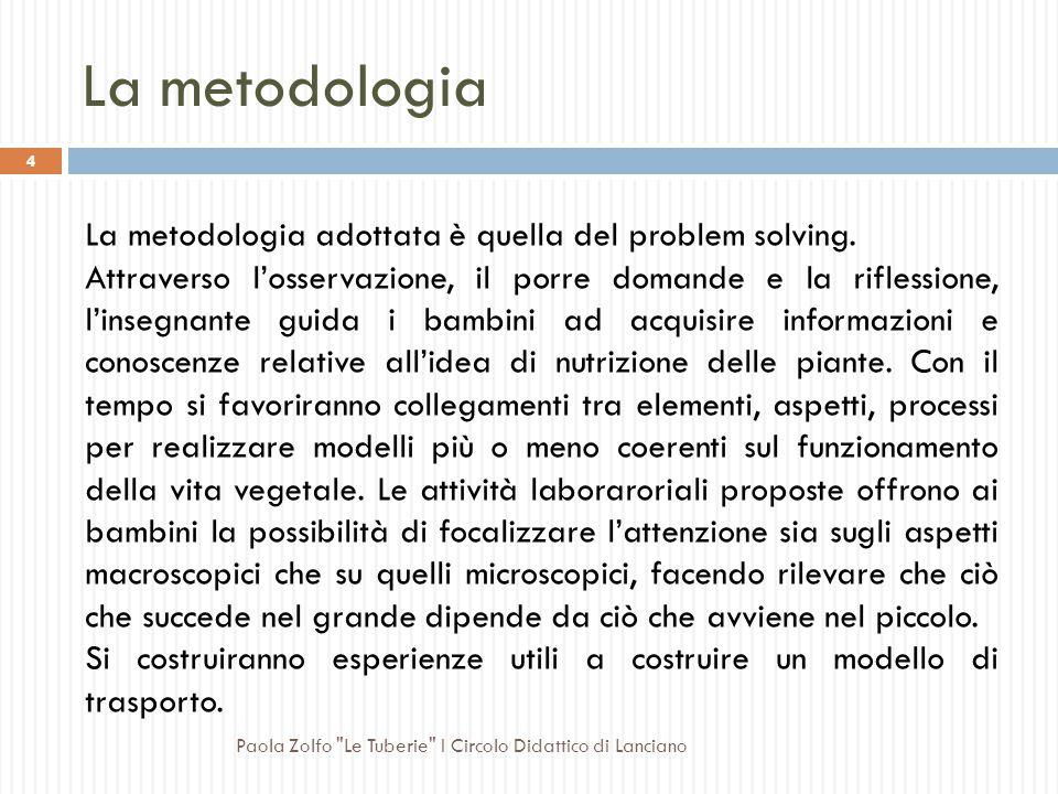 La metodologia La metodologia adottata è quella del problem solving.