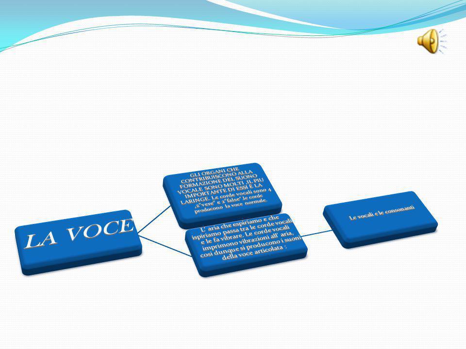 Le vocali e le consonanti