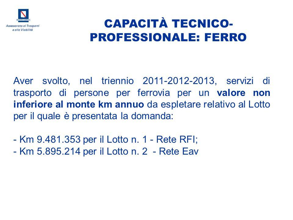 CAPACITÀ TECNICO-PROFESSIONALE: FERRO