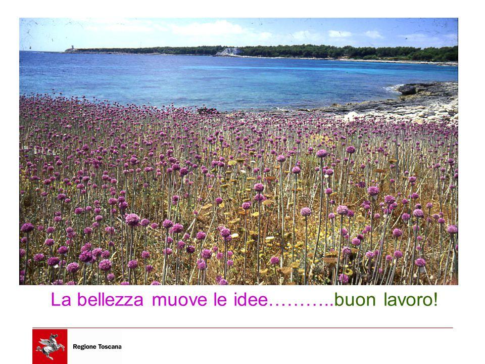 La bellezza muove le idee………..buon lavoro!