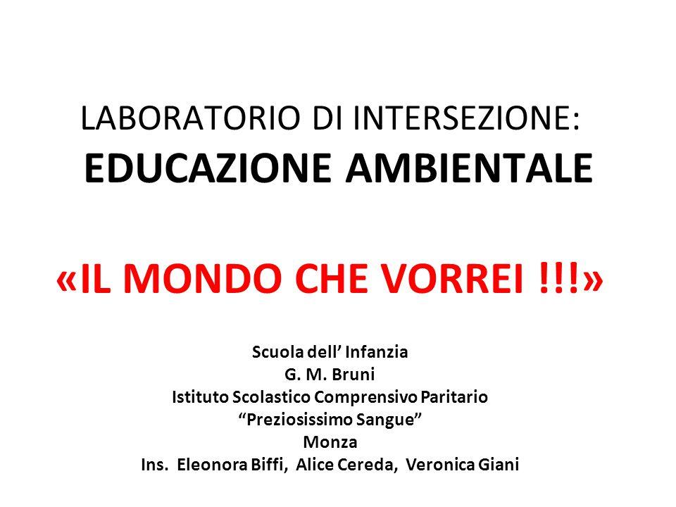 LABORATORIO DI INTERSEZIONE: EDUCAZIONE AMBIENTALE «IL MONDO CHE VORREI !!!»