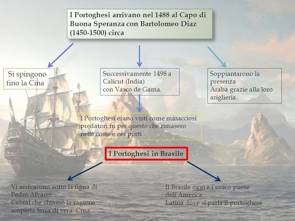 I Portoghesi arrivano nel 1488 al Capo di