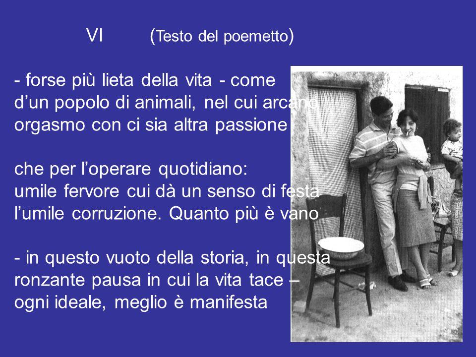 VI (Testo del poemetto)
