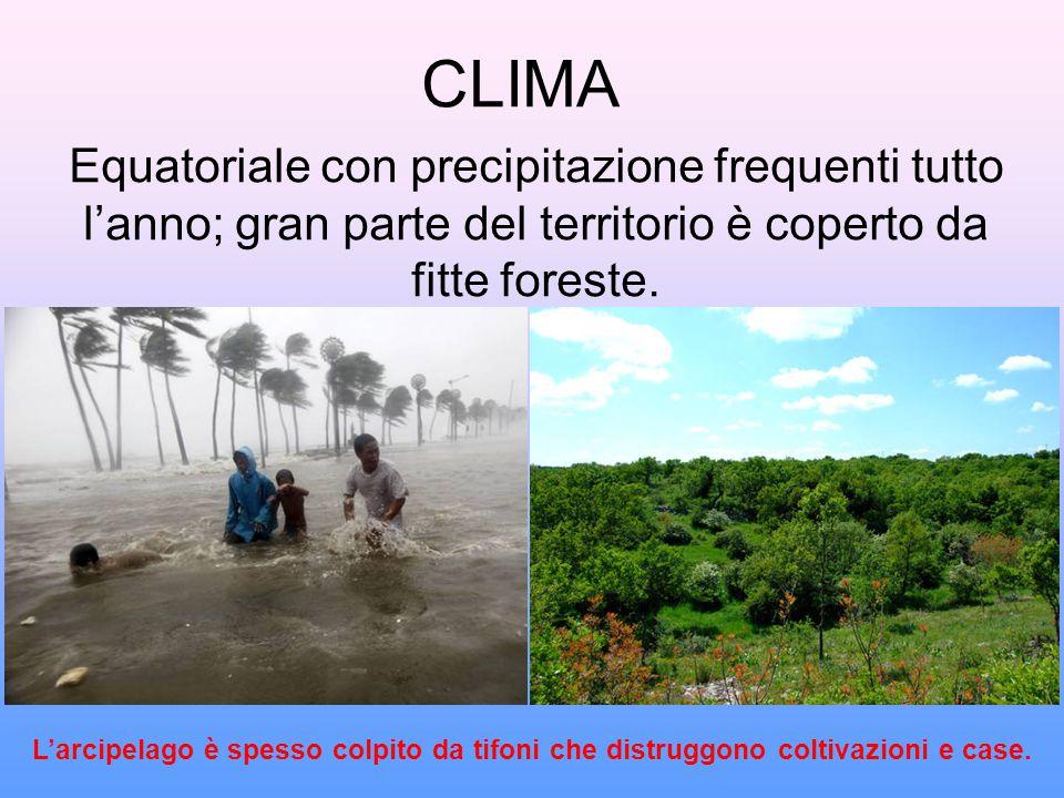 CLIMA Equatoriale con precipitazione frequenti tutto l'anno; gran parte del territorio è coperto da fitte foreste.