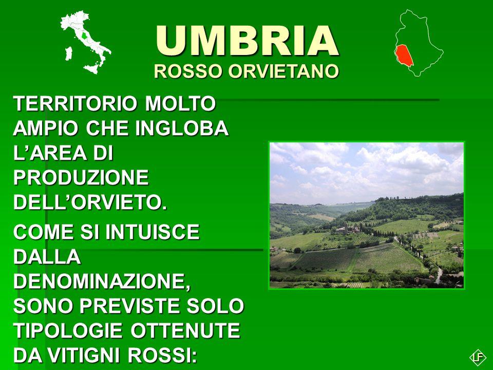 UMBRIA ROSSO ORVIETANO. TERRITORIO MOLTO AMPIO CHE INGLOBA L'AREA DI PRODUZIONE DELL'ORVIETO.