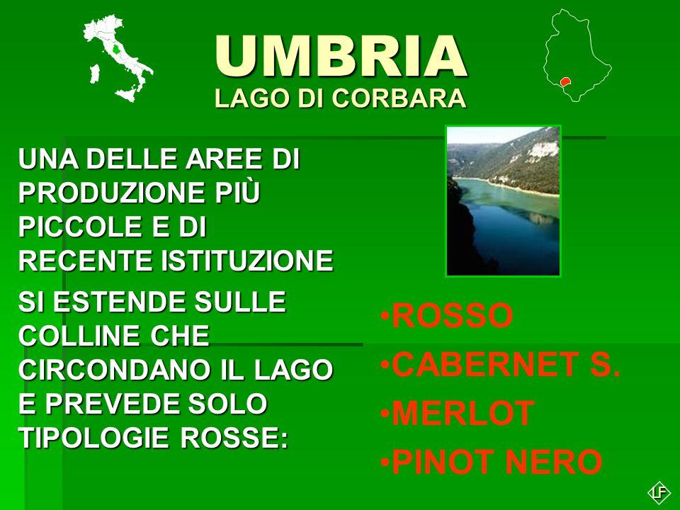 UMBRIA ROSSO CABERNET S. MERLOT PINOT NERO