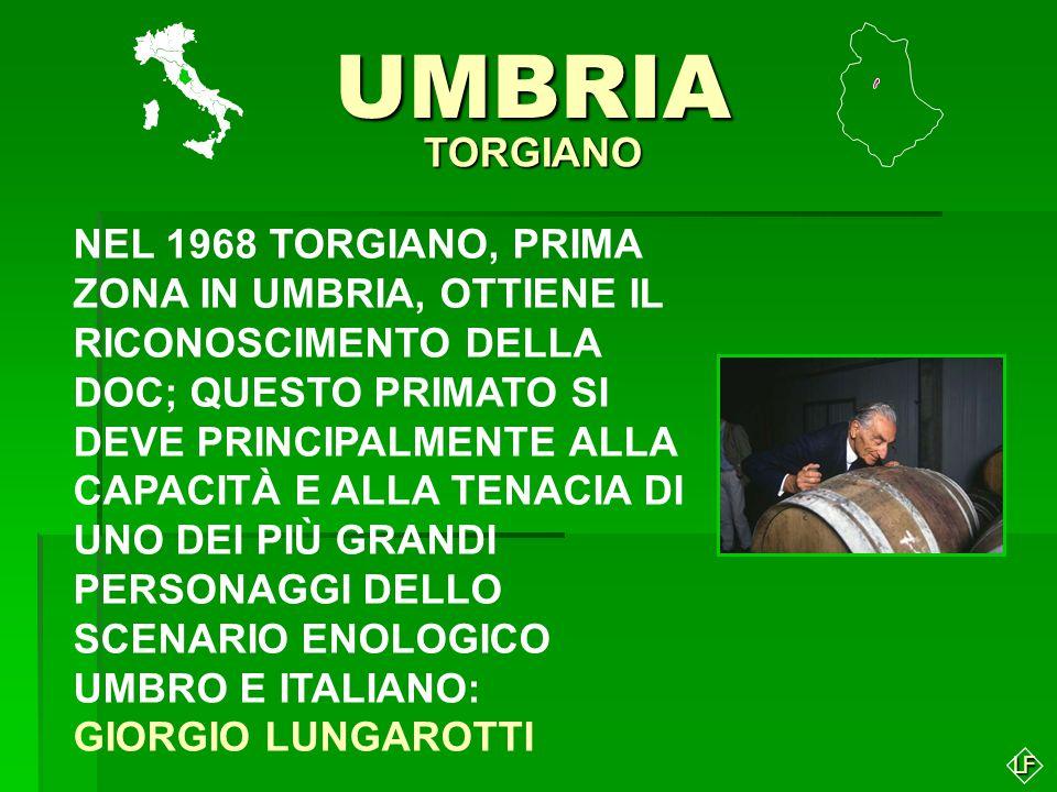 UMBRIA TORGIANO.