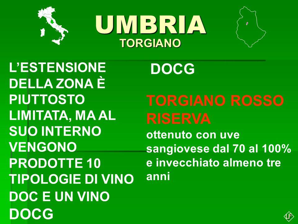 UMBRIA DOCG TORGIANO ROSSO RISERVA