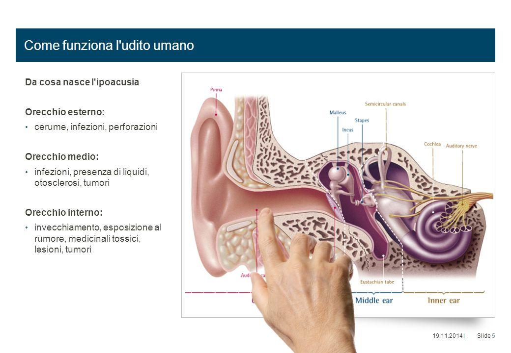 Come funziona l udito umano