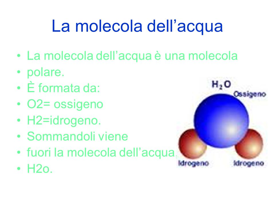 La molecola dell'acqua