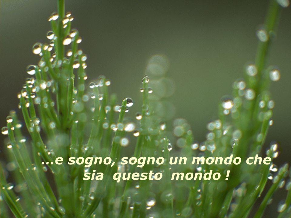 …e sogno, sogno un mondo che sia questo mondo !