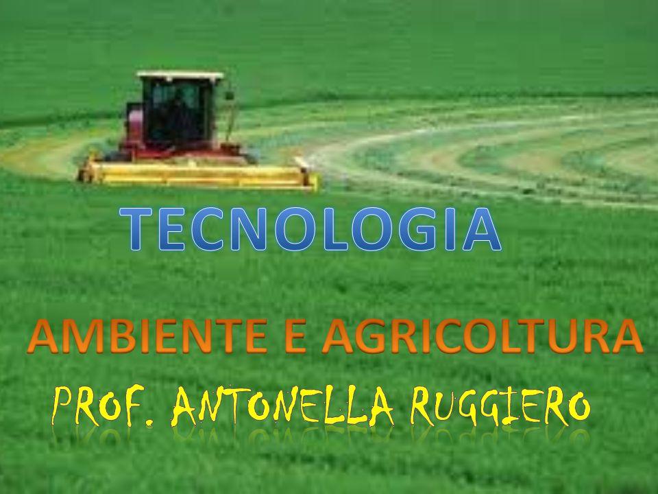 AMBIENTE E AGRICOLTURA Prof. Antonella ruggiero