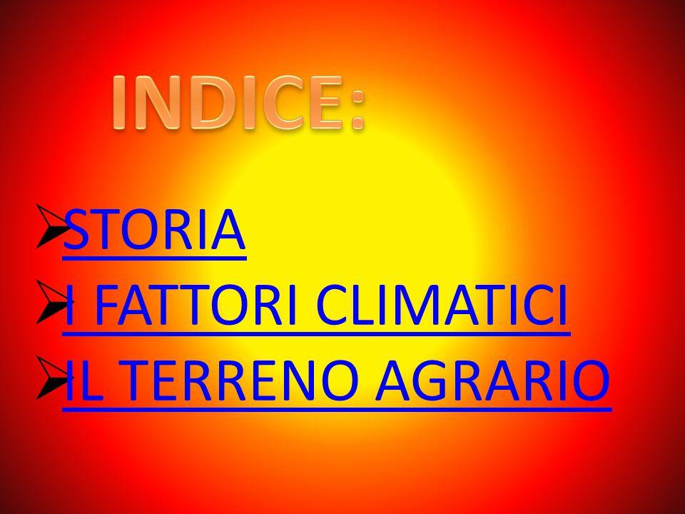 INDICE: STORIA I FATTORI CLIMATICI IL TERRENO AGRARIO