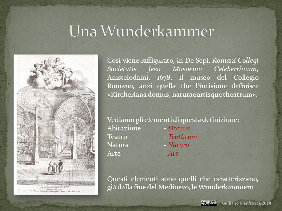 Una Wunderkammer