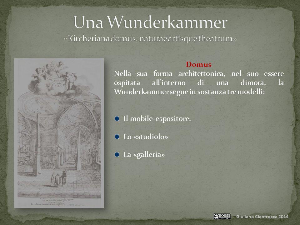 Una Wunderkammer «Kircheriana domus, naturae artisque theatrum»