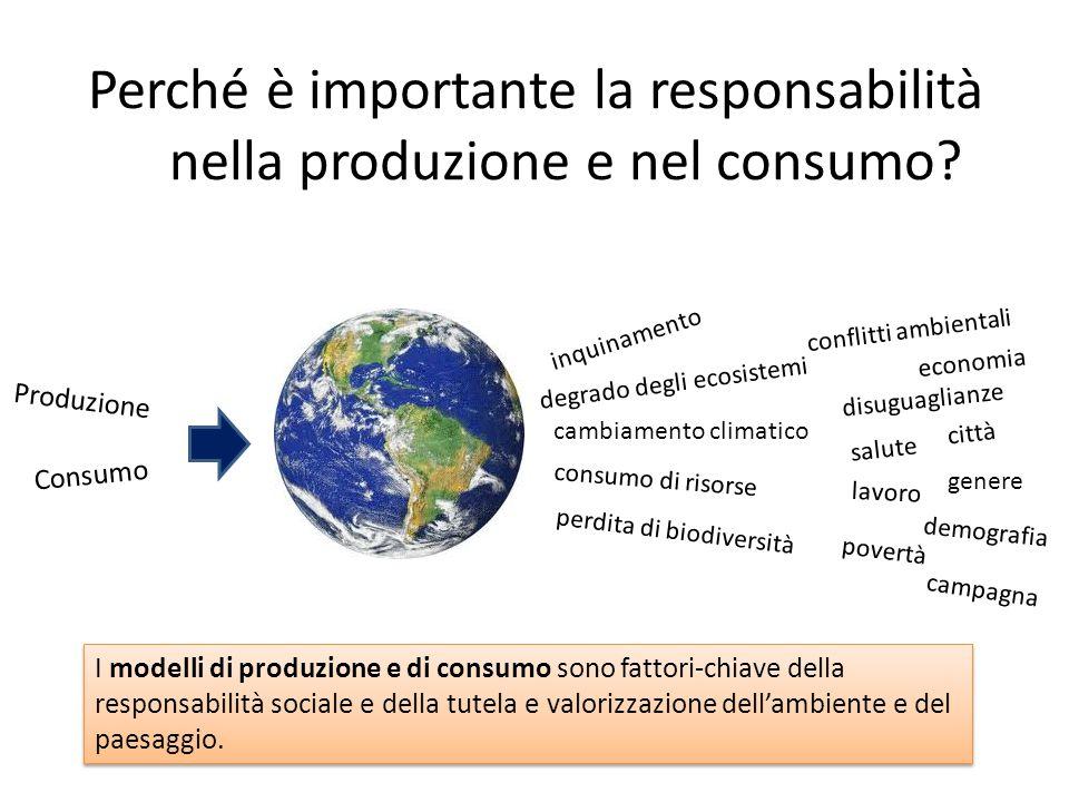 Perché è importante la responsabilità nella produzione e nel consumo