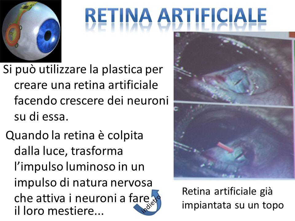 RETINA ARTIFICIALE Si può utilizzare la plastica per creare una retina artificiale facendo crescere dei neuroni su di essa.