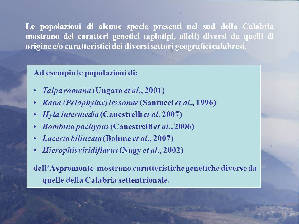 Le popolazioni di alcune specie presenti nel sud della Calabria mostrano dei caratteri genetici (aplotipi, alleli) diversi da quelli di origine e/o caratteristici dei diversi settori geografici calabresi.