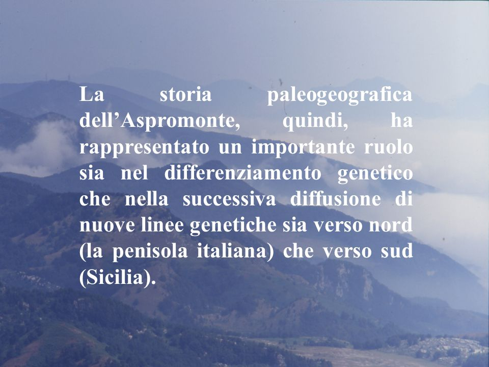 La storia paleogeografica dell'Aspromonte, quindi, ha rappresentato un importante ruolo sia nel differenziamento genetico che nella successiva diffusione di nuove linee genetiche sia verso nord (la penisola italiana) che verso sud (Sicilia).
