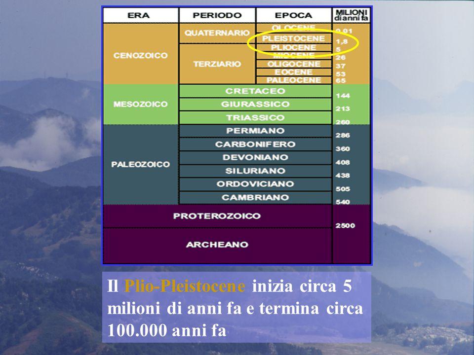 Il Plio-Pleistocene inizia circa 5 milioni di anni fa e termina circa 100.000 anni fa