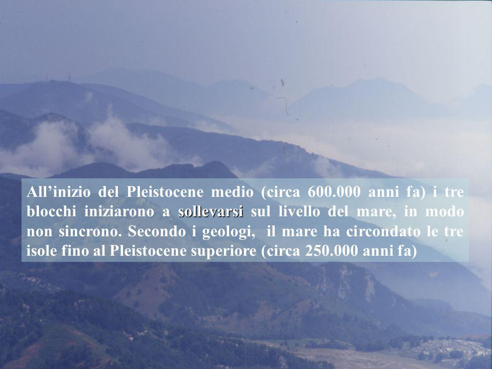 All'inizio del Pleistocene medio (circa 600
