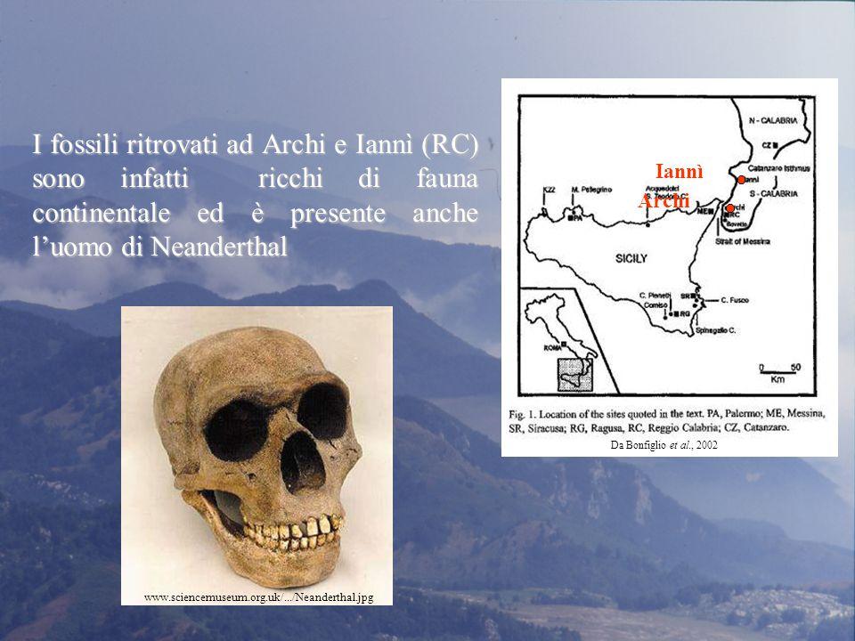 Archi Iannì. Da Bonfiglio et al., 2002.