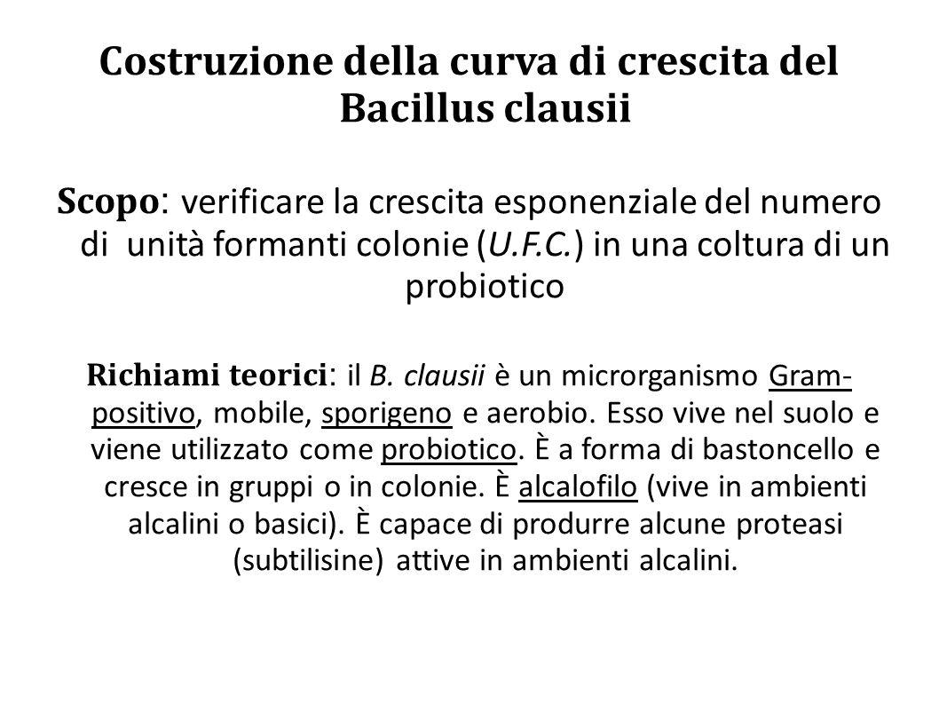 Costruzione della curva di crescita del Bacillus clausii