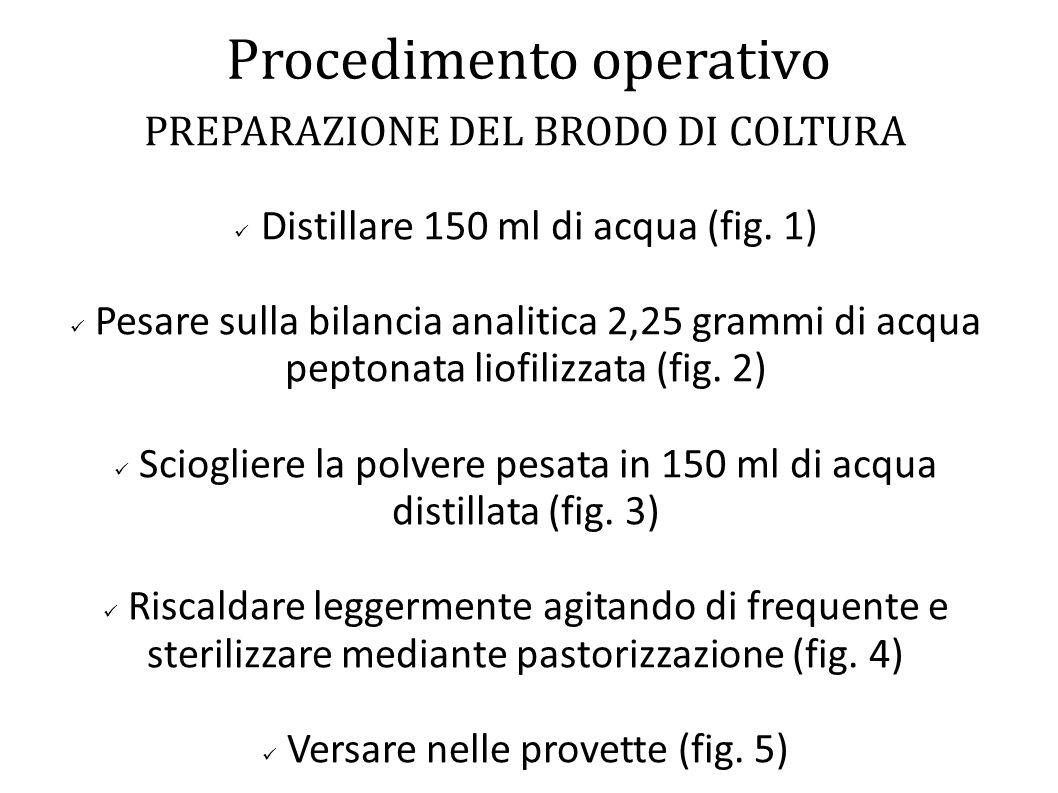 Procedimento operativo