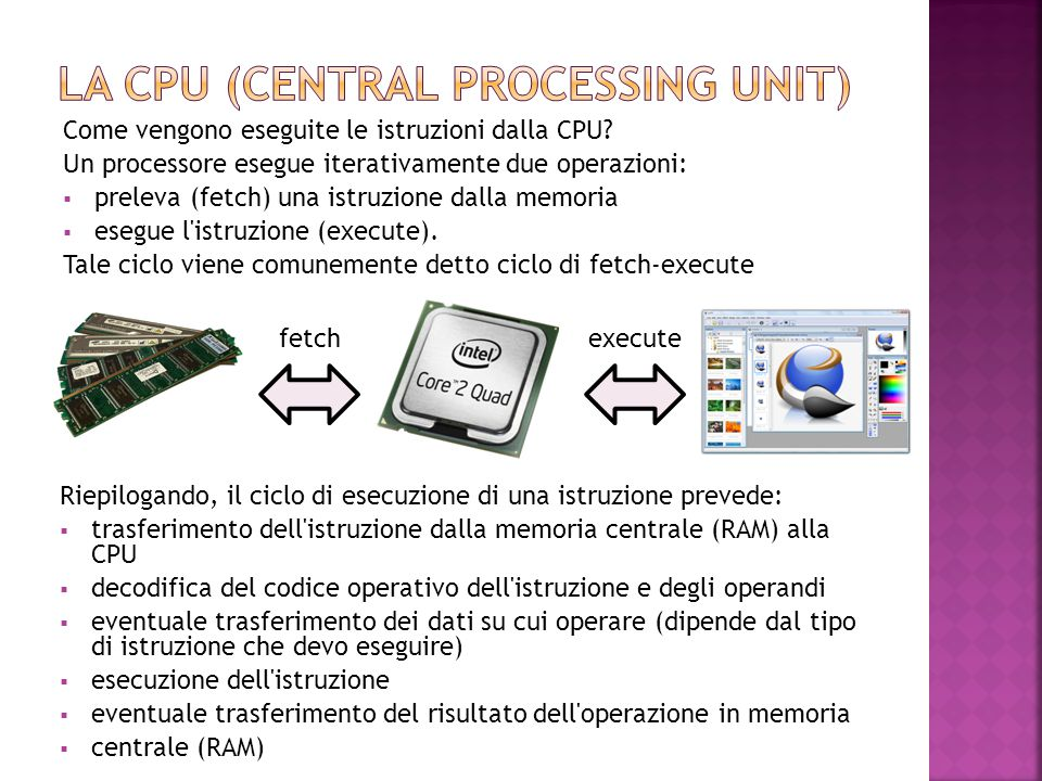 La CPU (Central Processing Unit)