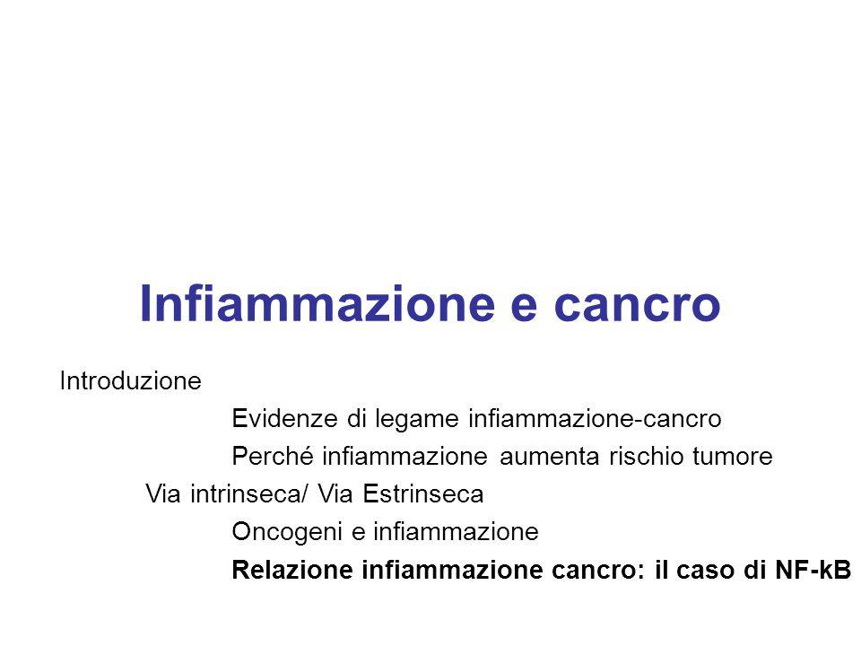 Infiammazione e cancro