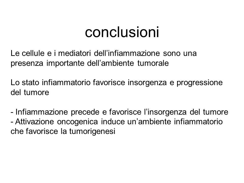 conclusioni Le cellule e i mediatori dell'infiammazione sono una presenza importante dell'ambiente tumorale.